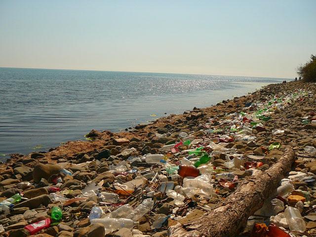 Пластик угрожает экологии земли