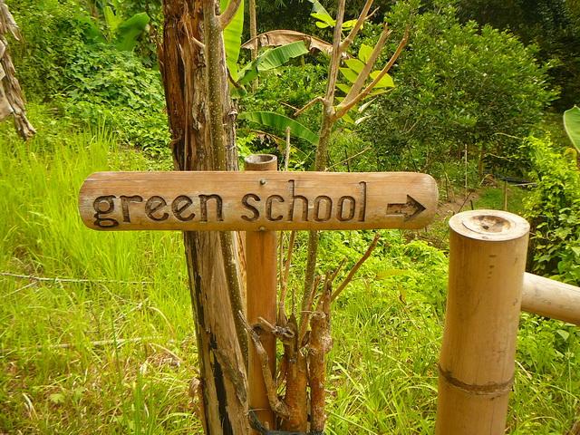 Экология, учеба
