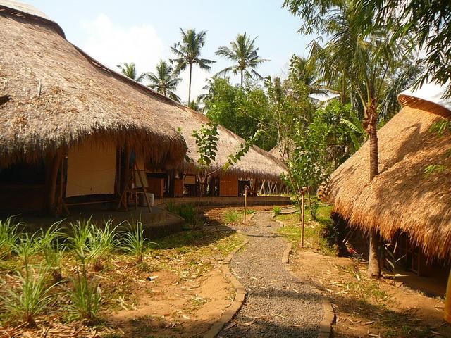 Эко-школа, Бали